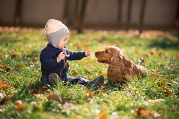 boy sitting on the grass with a dog