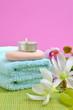 Wellness Seife Magnolien Rosa