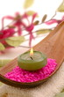 Wellness Magnoiien Kerze
