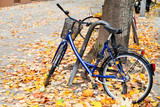 bicycle parked on street with autumn leaves in Berlin