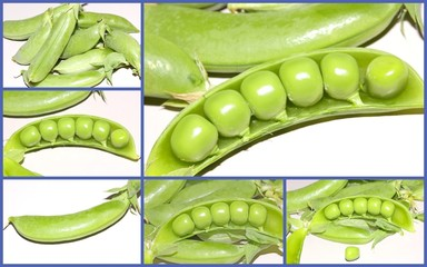 Fresh green peas collage
