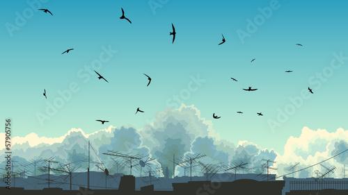 Obraz na płótnie Ilustracja niebo, ptaki i dachów.