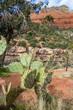 Arizona Apache Trail