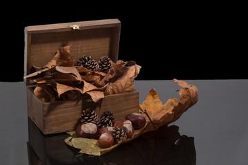 El otoño en caja de madera