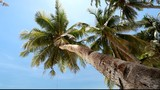 Beautiful beach view with slider motion