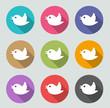 Tweet - Flat designs