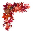Autumn leaves corner frame. Vector illustration.