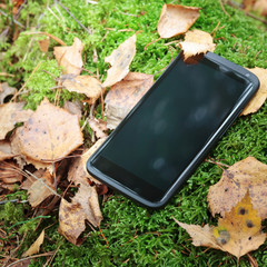 Smart phone in moss