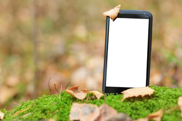 Smart phone in moss with empty screen