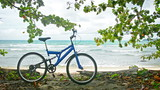 Bicycle on a tropical beach. Wild nature of Thailand