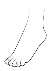 Human foot on white background