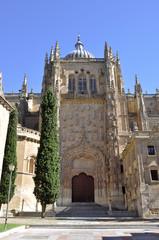 Catedral Nueva Salamanca