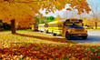 Yellow School Bus - 57919525