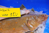 Sales of fresh flounder on the market poster