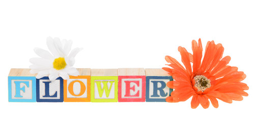 Letter blocks spelling flower with artificial flowers