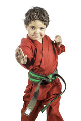 Young Boy in a Red Karate Uniform