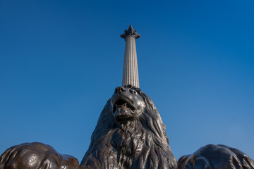 Bronze lion and Nelson's memorial on Trafalgar square, London
