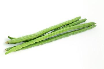 Bunch of Moringa Oleifera or sonjna on white