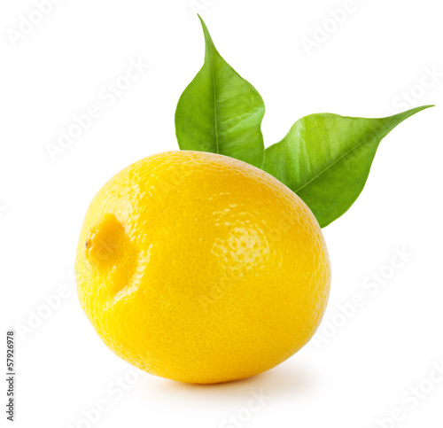 Sour lemon with leaves