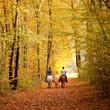 canvas print picture - Herbstlicher Ausritt