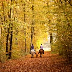 Herbstlicher Ausritt