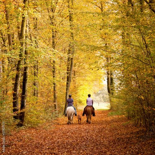 canvas print picture Herbstlicher Ausritt