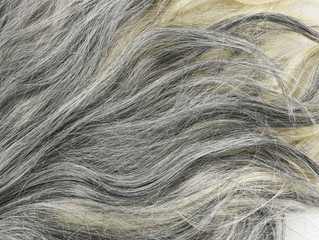Grey  Hair Background