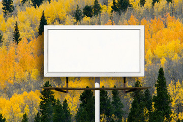 Blank Billboard Sign with  Fall Aspen Tree Forest