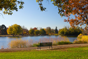 Park Bench by the Lake in Fall - Denver, CO