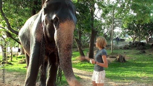Girl feeding the elephant by bananas.