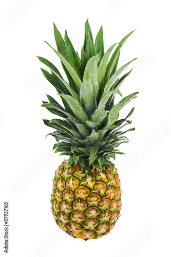 Ripe whole pineapple isolated on white background.