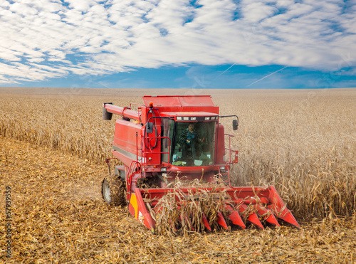 Combine  at the harvest in autumn