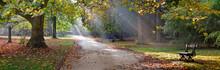 "Постер, картина, фотообои ""Path in the autumn park. Autumn Landscape."""