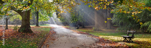Path in the autumn park. Autumn Landscape. - 57940980