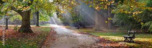 Leinwanddruck Bild Path in the autumn park. Autumn Landscape.