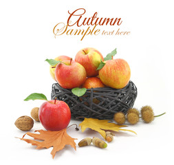 Autumn decorated basket with apples