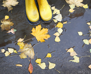 Feet in yellow rubber boots standing in a puddle