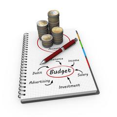 Budget as concept