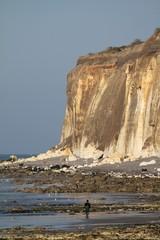 falaises normandes,seine maritime,pays de caux