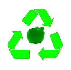Sustainable development, renewable energy sources and recycling