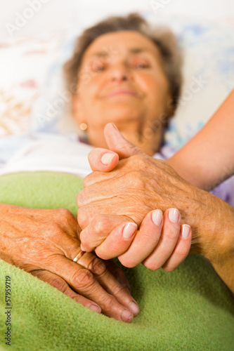 Care Love and Trust for Elders