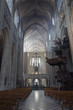 Leuven - Nave of st. Peters gothic cathedral