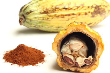 Cacao fruit and cocoa powder