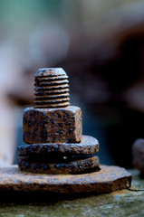 old rusty bolt