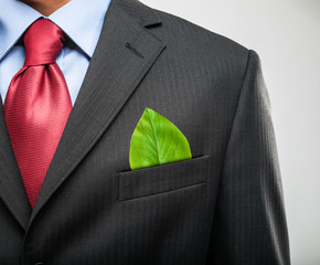 Businessman keeping a green leaf in his pocket