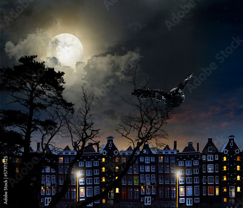 night city Amsterdam