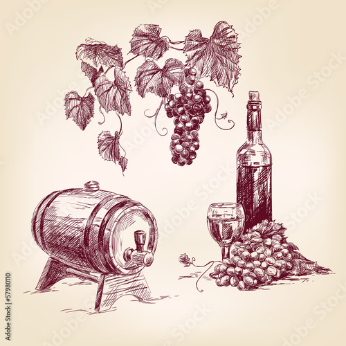 wine collection hand drawn vintage  vector illustration