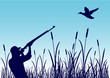 Chasse au canard - zone humide - fond bleu - 57982922