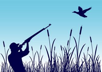 Chasse au canard - zone humide - fond bleu