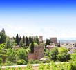 Alhambra Castle, Spain